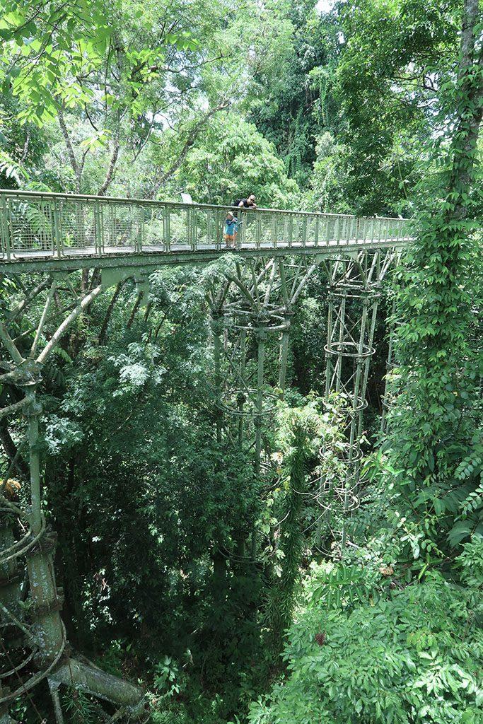 1discoverrainforestcentre sepilok