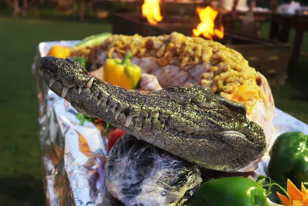 jul - krokodil